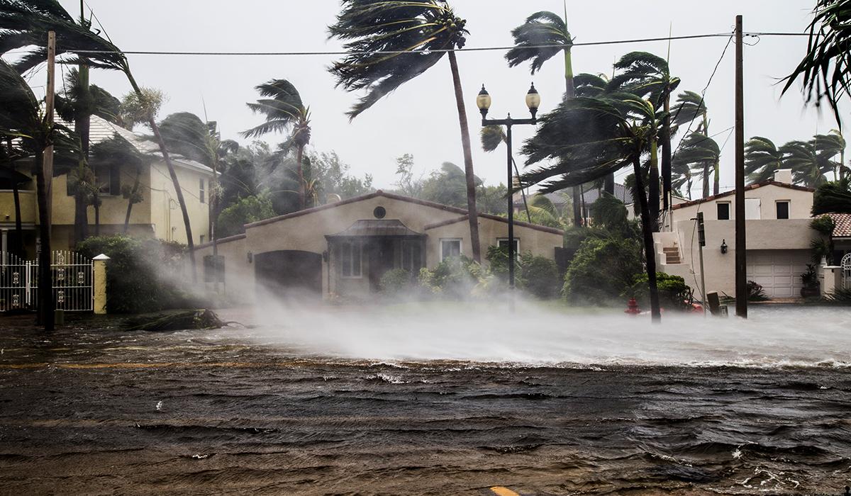 Overcoming Hurricane Season's Blackouts with Solar + Storage
